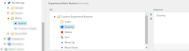 rendering-custom-experience-button