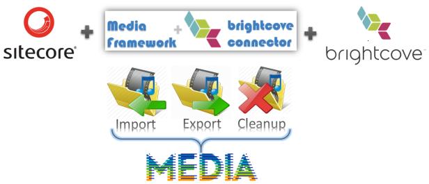 Sitecore-mediaframework-2